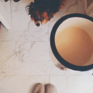 A girl's slippers, a cup of coffee, and a cute dog