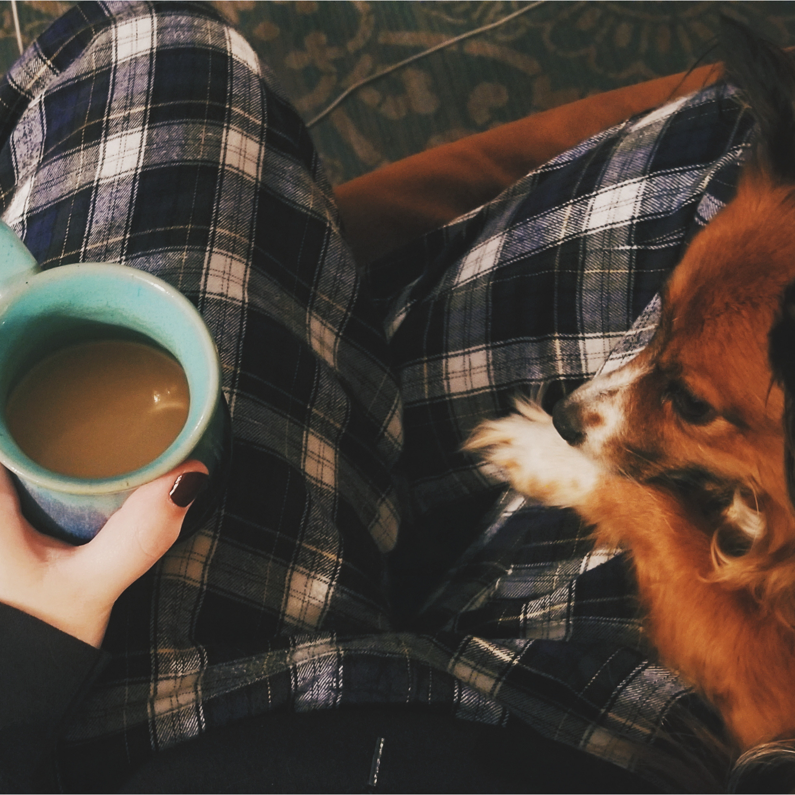 A down shot of a girl in pj pants holding a cup of coffee with a dog in her lap and a devotional book to her left while sitting on a couch