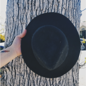 A black hat being held in front of a tree