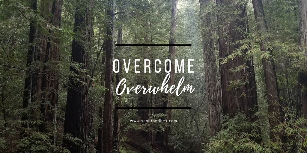 Overcome Overwhelm by Scout and Bex